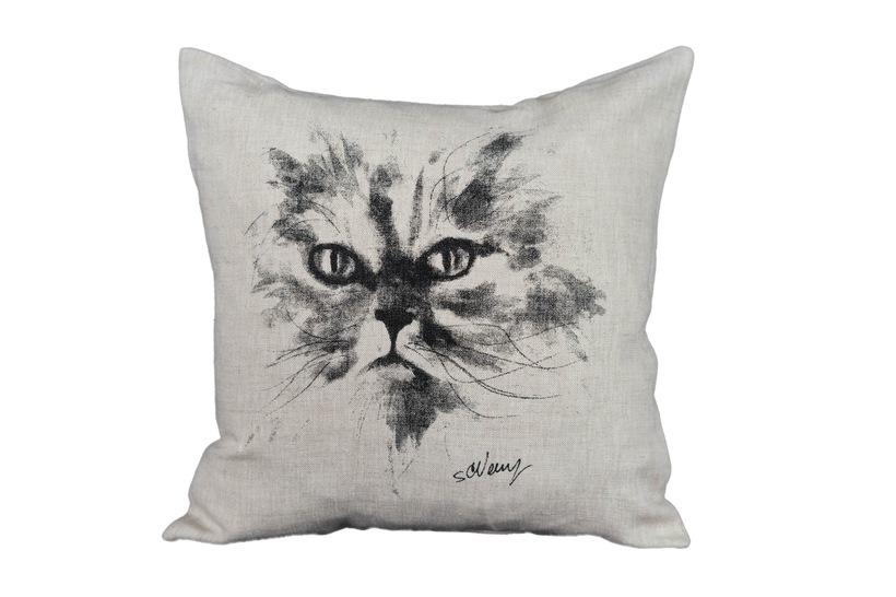 Cat on pillow