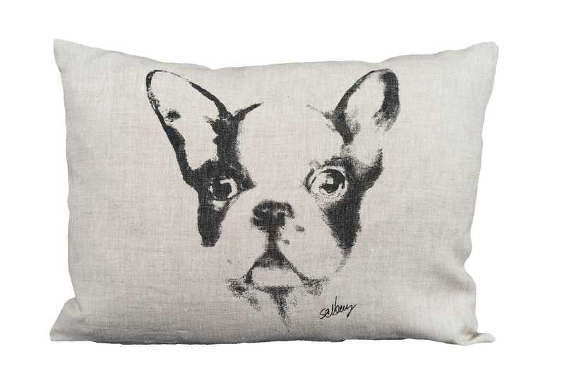 Dog on pillow
