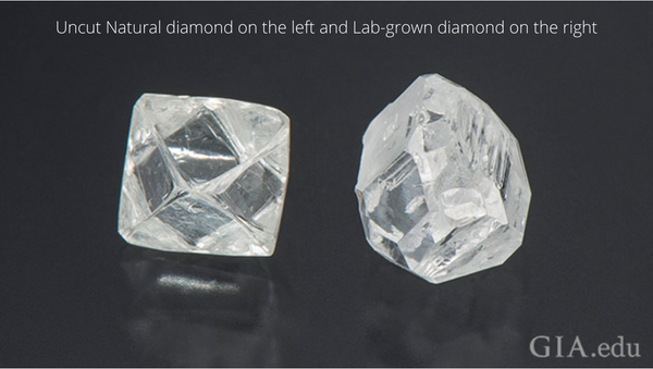 Uncut Natural Earth Diamond and Lab Grown Diamond | Image GIA