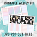 Take Me To The Mouse Printable Weekly Planner Stickers