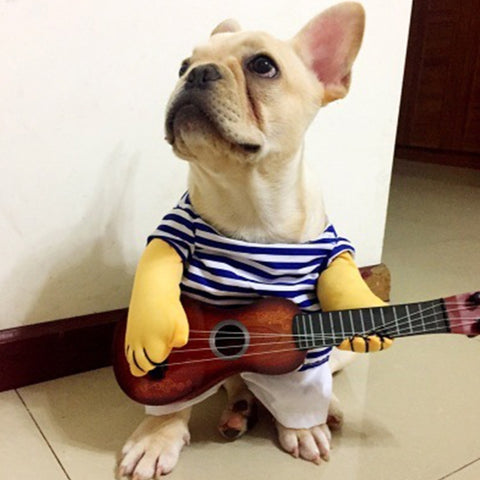 Dog & Cat Cosplay Guitar blue striped Costume Dress M/L/XL