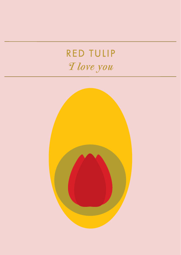 Postcard • RED TULIP