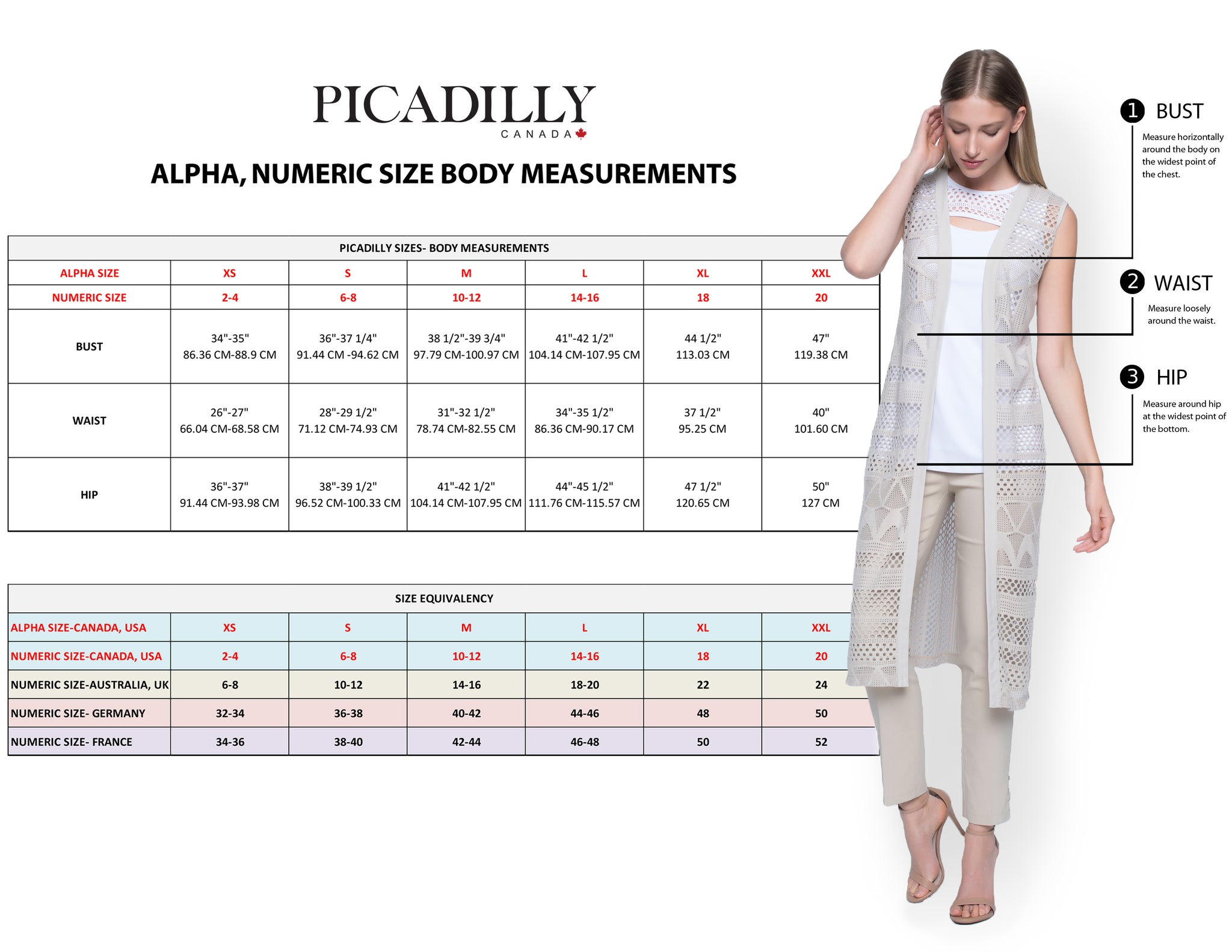 Picadilly Body Measurement - International sizing chart