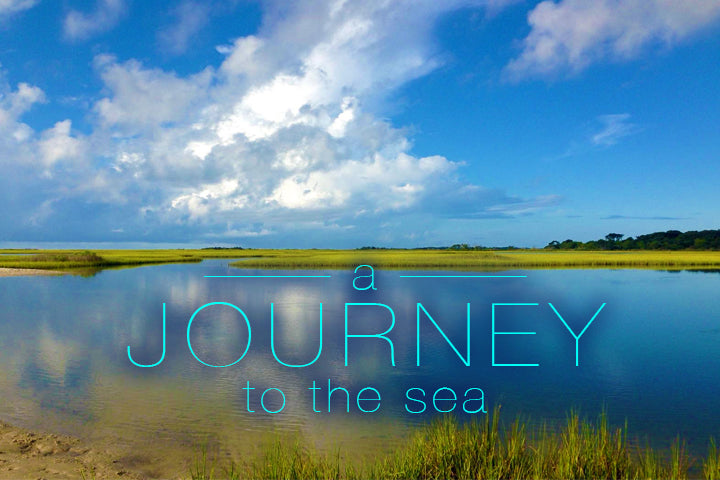 A Journey To The Sea - Stacey Silkey