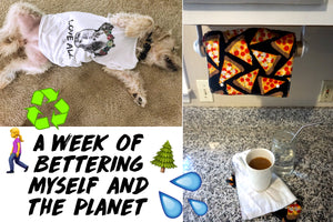 FIVE DAYS OF MAKING THE PLANET AND MY LIFE BETTER (VIDEO)
