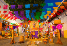 Load image into Gallery viewer, Mexico Street Decoration Photo Backgrounds for Dia De Los Muertos Studio-ubackdrop