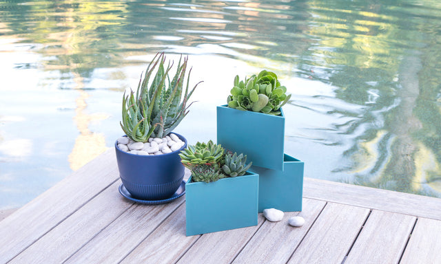 The Best Planters for Spring