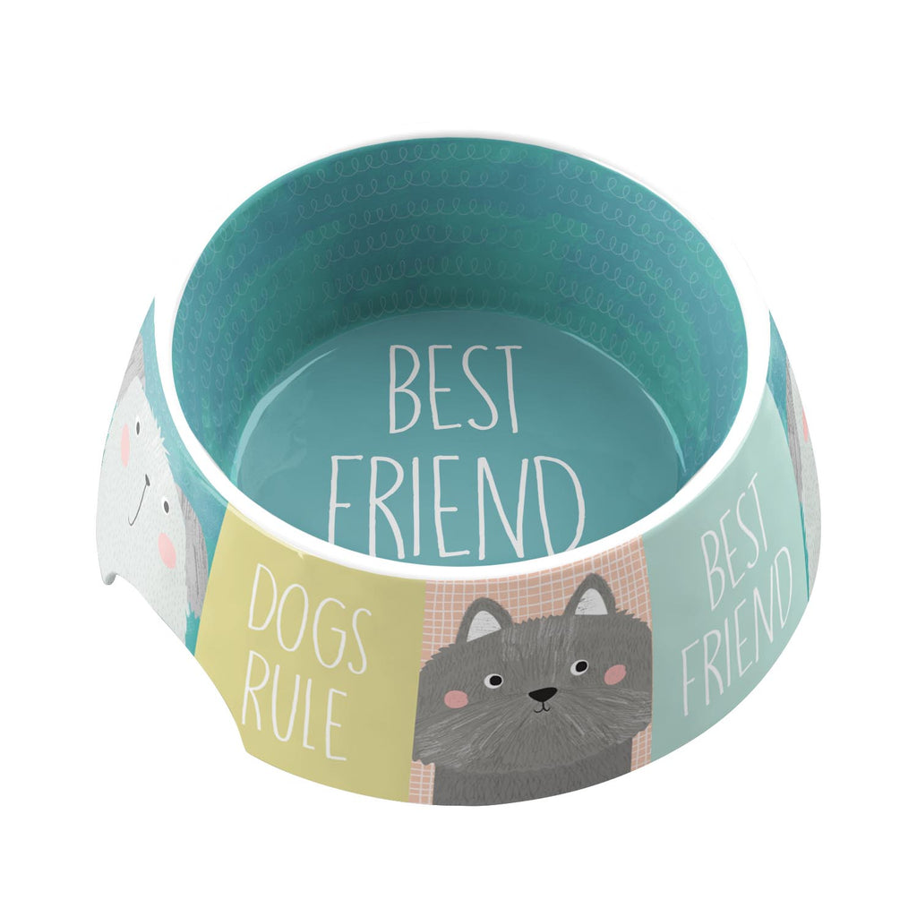 Best Friends Forever Medium Pet Bowl (Set of 2)