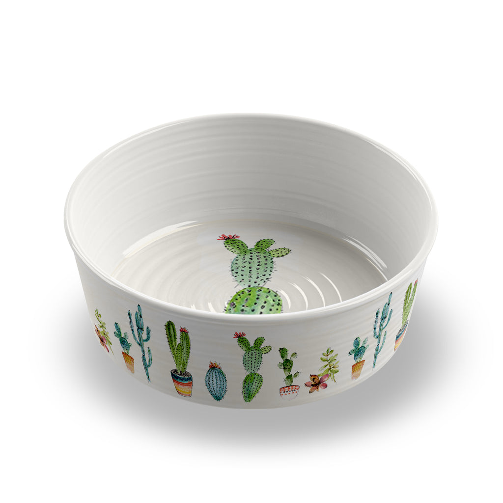 Cactus Large Pet Bowl (Set of 2)