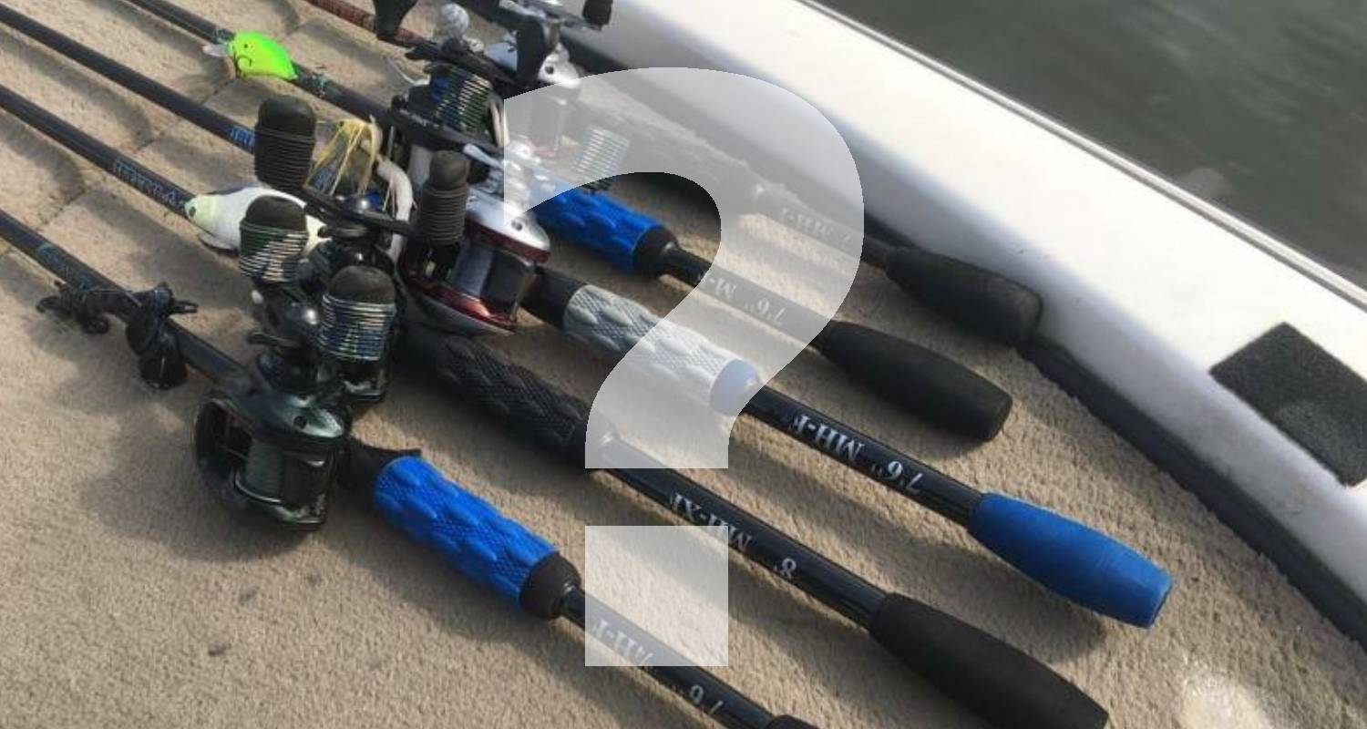 Rods And Reels For Carolina Rigs: A Complete Buyer's Guide