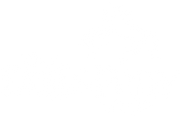 Dog & Pony Shop
