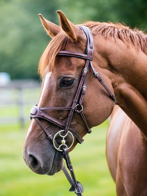 Nunn Finer Arianna Figure-8 Bridle