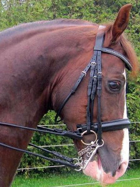 Exselle Rolled Weymouth Bridle