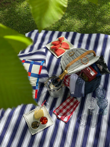 Blue Stripe Canvas Picnic Rug