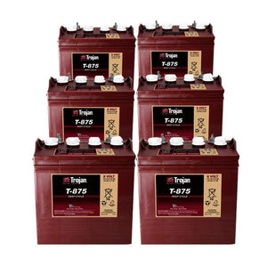 8 Volt Deep Cycle Golf Cart Battery | T-875 - Set of 6