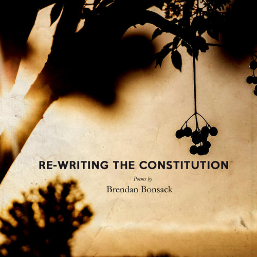 Brendan Bonsack / Re-writing the Constitution