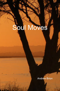 Andrew Brion / Soul Moves