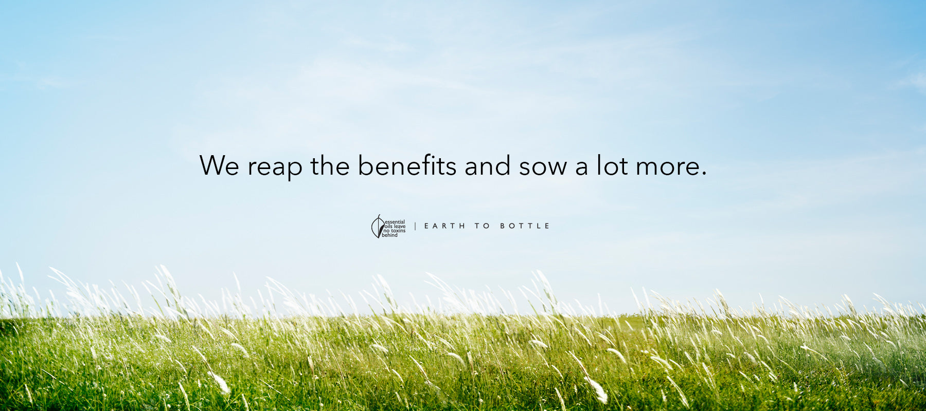 We reap the benefits and sow a lot more.