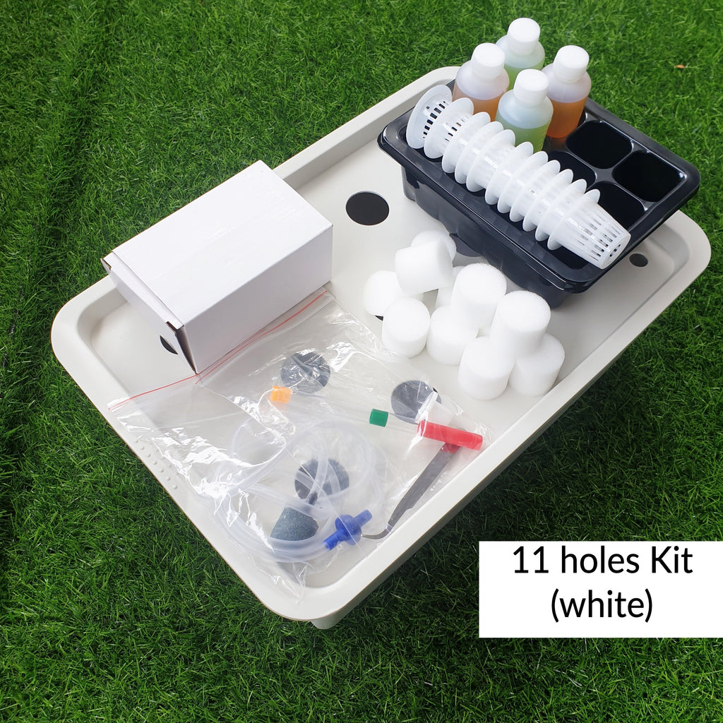 Hydroponics Growth kit- 11 holes kit (White)