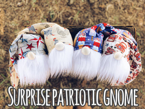 SURPRISE Patriotic Gnome