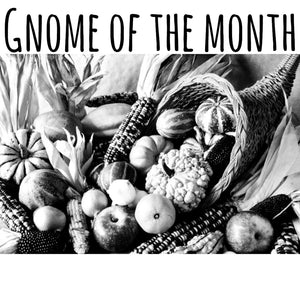Gnome Of The Month: SEPTEMBER