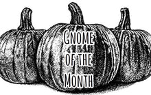 Gnome Of The Month: JULY2020
