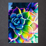 Supp Succulents by Rachel Rosenkoetter 1 Piece Canvas