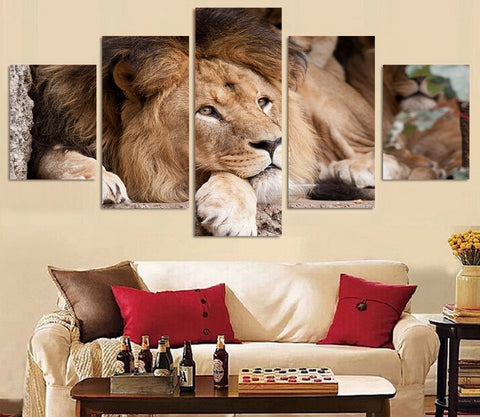 Hiding Lion 5 Piece Canvas