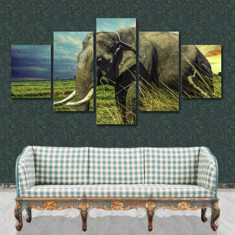Elephant Grassland 5 Piece Canvas