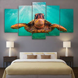 Turtle 5 Piece Canvas