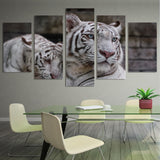 White Tigers 5 Piece Canvas