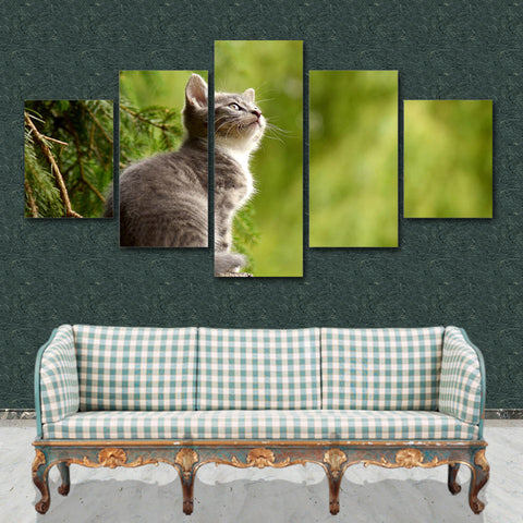 Cute Kitty Cat 5 Piece Canvas