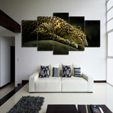 Lying Leopard 5 Piece Canvas
