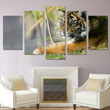 Tiger Grass Lying 5 Piece Canvas