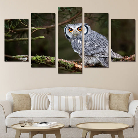 Owl at Tree Branch 5 Piece Canvas