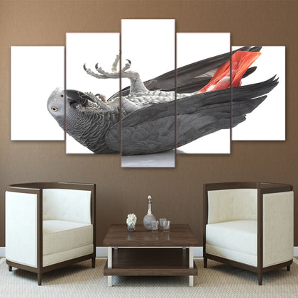 Gray Parrot 5 Piece Canvas