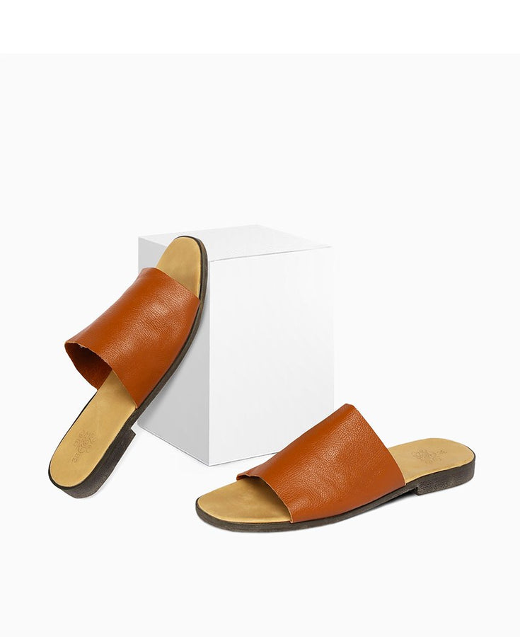 Classic Brown Slides