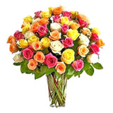 50 Mixed Roses in Vase