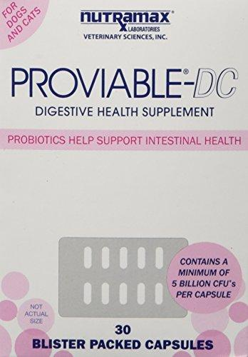 Nutramax Proviable DC Capsules for Cats and Dogs, 30 Count Animal Wellness Nutramax