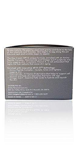 Visage Envy Remodeling Day Cream SPF 15, 1.7 Ounce