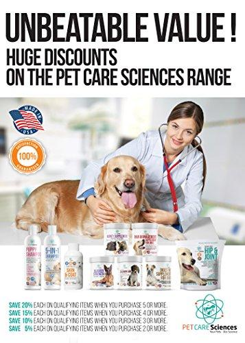 PET CARE Sciences Dog Digestive Supplement, Probiotic & Prebiotic - Stomach Supplement for Dogs - Made In the USA Animal Wellness PET CARE Sciences