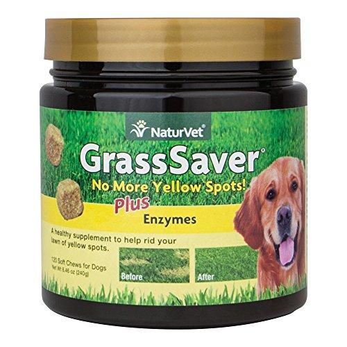 NaturVet 120 Count Grass Saver Soft Chews Jar with Enzymes for Dogs Animal Wellness NaturVet