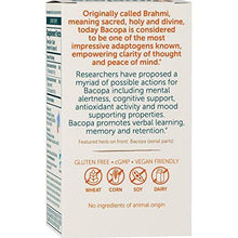 Bacopa/Brahmi, Mental Alertness, Cognitive Health & Memory Support