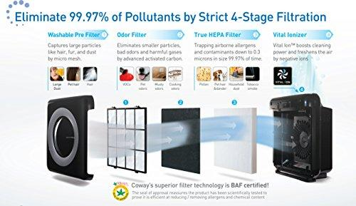 Mighty Air Purifier with True HEPA and Eco Mode Accessory Coway