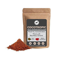 Cocotropic Raw Cacao with Reishi Mushroom, Chaga Extract, Raw Maca and Turmeric Supplement Wild Foods