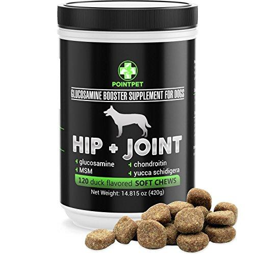 POINTPET Hip and Joint Supplement for Dogs with Glucosamine, MSM, Chondroitin, Omega 3, 6, Vitamin E, Improves Mobility and Hip Dysplasia, Arthritis Pain Relief, 120 Soft Chews Animal Wellness POINTPET