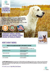 Best Premium Bladder Strength & Kidney Function Chews - Naturally Derived for Adult Dogs & Spayed Females to Help Maintain & Support Healthy Bladder Control, Dog Incontinence, UTI, Renal Support.