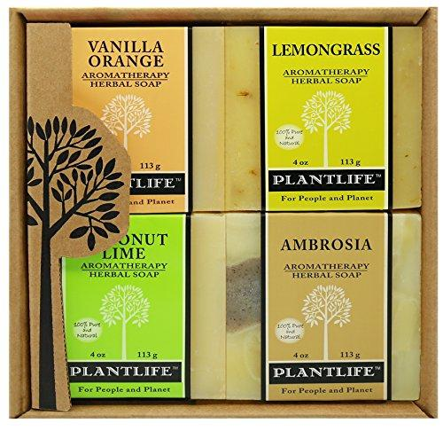 Aromatherapy Herbal Soap Top 4 Pack Soap Combo Fruit Gift Set (Vanilla Orange, Lemongrass, Coconut Lime and Ambrosia)