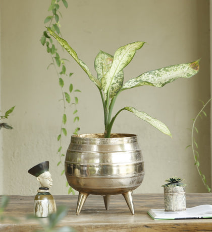 Pot With Legs Planter