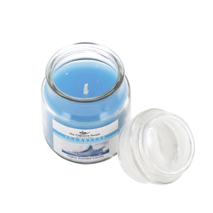 The Home Seabreeze Small Jar Candle